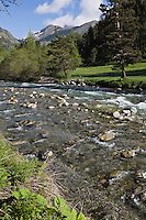 Europe/France/Provence-Alpes-Côtes d'Azur/06/Alpes-Maritimes/Alpes-Maritimes/Arrière Pays Niçois/Env de Casterino: Vallée de la Casterine