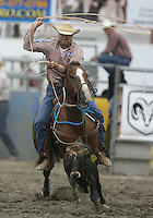 26 Aug 2010:  Adam Gray scored a time of 12.9 in the slack Tie Down Roping competition at the Kitsap County Stampede Wrangle Million Dollar PRCA Silver Rodeo Tour Bremerton, Washington.