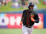 San Francisco Giants' Denard Span runs the bases after hitting a home run in a spring training game against the Milwaukee Brewers in Phoenix, AZ, on Thursday, March 23, 2017.<br /> Photo by Cathleen Allison/Nevada Photo Source