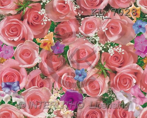 Interlitho, Erica, GIFT WRAPS, paintings, pink roses(KL7028,#GP#) everyday