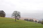 Europa, DEU, Deutschland, Rheinland-Pfalz, Naturpark Saar-Hunsrueck, Typische Landschaft, Herbst, Baum, Huegellandschaft, Kategorien und Themen, Natur, Umwelt, Landschaft, Jahreszeiten, Stimmungen, Landschaftsfotografie, Landschaften, Landschaftsphoto, Landschaftsphotographie, Tourismus, Touristik, Touristisch, Touristisches, Urlaub, Reisen, Reisen, Ferien, Urlaubsreise, Freizeit, Reise, Reiseziele, Ferienziele....[Fuer die Nutzung gelten die jeweils gueltigen Allgemeinen Liefer-und Geschaeftsbedingungen. Nutzung nur gegen Verwendungsmeldung und Nachweis. Download der AGB unter http://www.image-box.com oder werden auf Anfrage zugesendet. Freigabe ist vorher erforderlich. Jede Nutzung des Fotos ist honorarpflichtig gemaess derzeit gueltiger MFM Liste - Kontakt, Uwe Schmid-Fotografie, Duisburg, Tel. (+49).2065.677997, ..archiv@image-box.com, www.image-box.com]