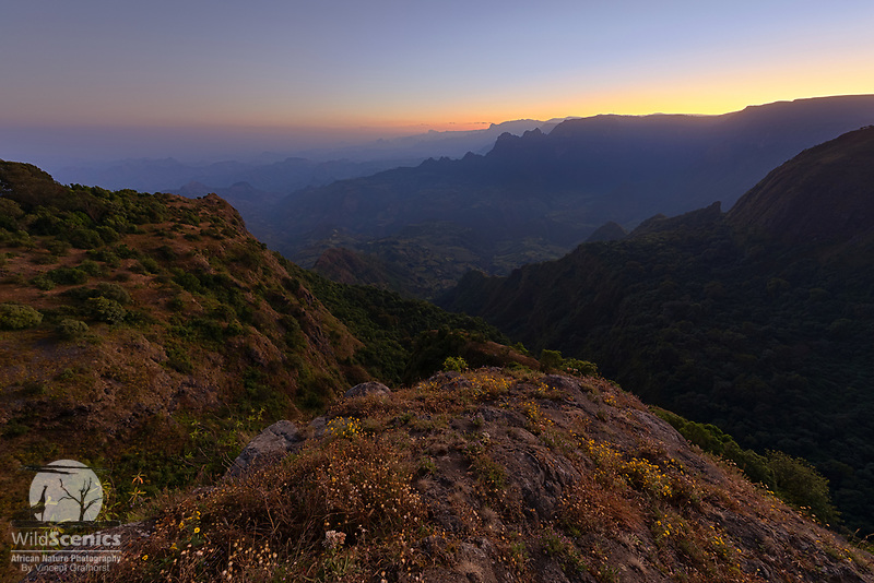 Simien Mountain landscape at dawn.