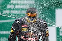 SAO PAULO, SP, 24.11.2013 - F1 GP BRASIL - O piloto australiano Mark Webber apos o Grande Prêmio do Brasil de Fórmula 1, no autódromo de Interlagos, zona sul da capital paulista, neste domingo (24). (Foto: Pixathlon / Brazil Photo Press).