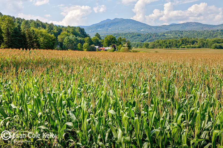 Farmland in Stowe, VT, USA