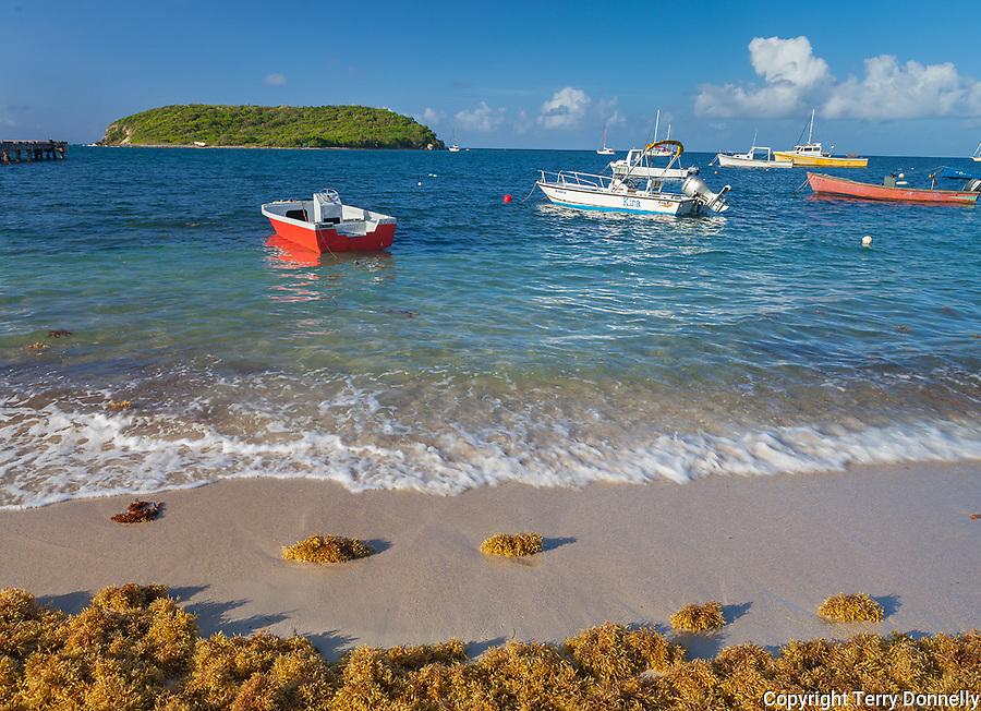 Vieques Island, Puerto Rico<br /> Colorful boats moored in the Esperanza harbor