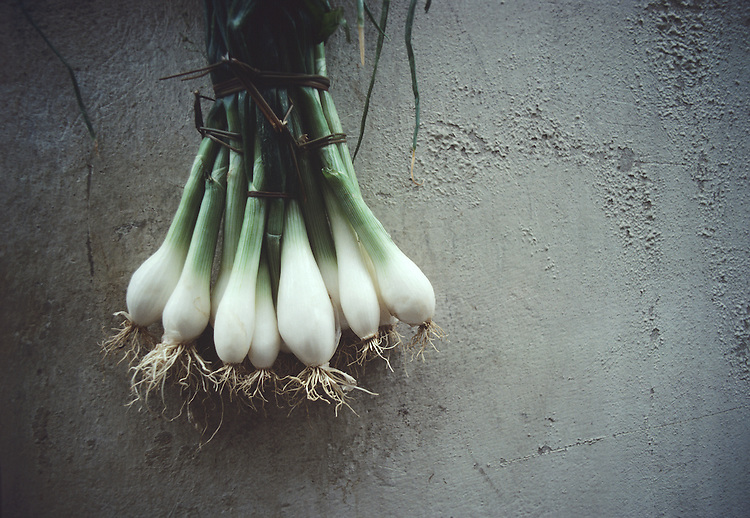 Tied Onions