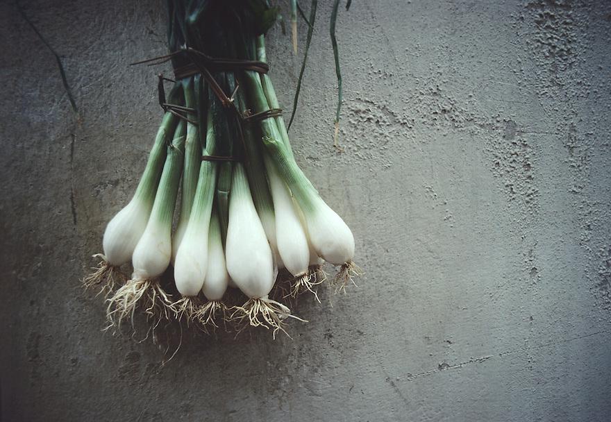 Tied Onions