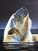Sandi, REALISTIC ANIMALS, REALISTISCHE TIERE, ANIMALES REALISTICOS, paintings+++++,USSN58,#a#, EVERYDAY ,polar bears ,puzzles