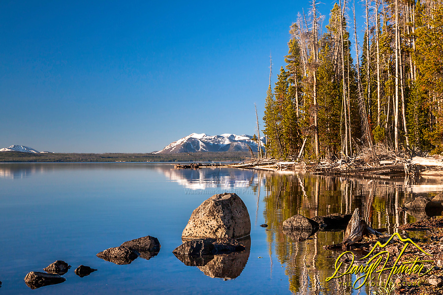 A still morning on Yellowstone Lake in Yellowstone National Park.  Mount Sheridan, the forest and rocks reflecting upon the still waters.