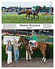 Twister Crossing winning at Delaware Park on 6/30/09
