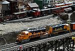trains at the Living Desert