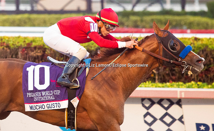 January 25, 2020: #10 Mucho Gusto with jockey Irad Ortiz Jr. on board wins the Pegasus World Cup Invitational at Gulfstream Park Race Track in Hallandale Beach, Florida. Liz Lamont/Eclipse Sportswire/CSM