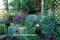 63821-04515 Butterfly/Hummingbird garden in containers on deck    IL