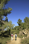 Israel, Jerusalem mountains, the trail to Ein Handak