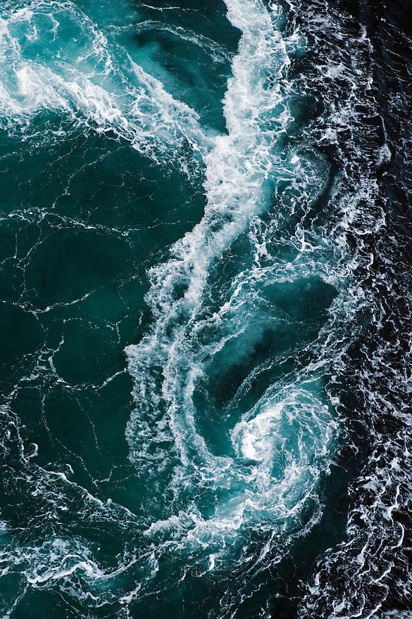 The whirlpools of Saltstraumen.Atlantic marine life, Saltstraumen, Bodö, Norway