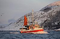 Traditional Norwegian fishing boat or Sjark under way in coastal fjord. Lofoten, North Norway