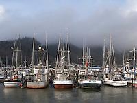 Garabaldi Oregon - Commercial fishing vessels docked in Garabaldi Oreogn