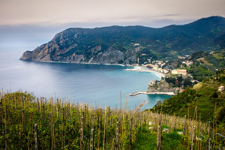 MONTEROSSO AL MARE, ITALY - CIRCA MAY 2015:  Vineyards around Monterosso al Mare in  Cinque Terre, Italy.