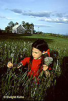 MD03-006z  Dandelion - Girl picking dandelions that have gone to seed in a meadow - Taraxacum officinale