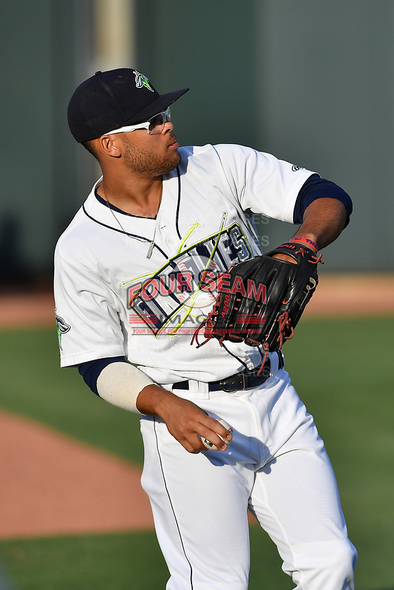 Center fielder Desmond Lindsay (2) of the Columbia Fireflies warms up before a game against the Lexington Legends on Saturday, April 22, 2017, at Spirit Communications Park in Columbia, South Carolina. Lexington won, 4-0. (Tom Priddy/Four Seam Images)