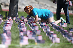 Volunteer Katie Koerner helps members of the Western Nevada College Veterans Resource Center plant nearly 8,000 American flags at the campus, in Carson City, Nev., on Friday, May 1, 2015. The group will hold a Veterans Suicide Walk Saturday, May 2 at starting 10 a.m. at Bully's Sports Bar and Grill to help raise awareness of the 8,030 veteran suicides each year. <br /> Photo by Cathleen Allison/Nevada Photo Source