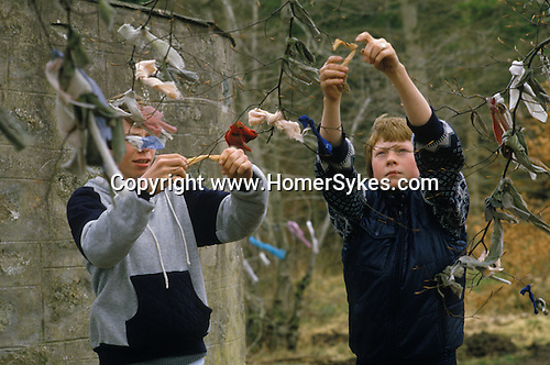 Teenage boys tying clooties to branch of tree near the pagan well. St Marys Well Clootie Well Culloden Moor Smithton Invernesshire  Scotland. family hanging up clooties.