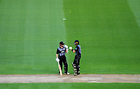 NZ batsmen Kane Williamson (left) and Martin Guptill during the International Twenty20 cricket match between the NZ Black Caps and England at Westpac Stadium in Wellington, New Zealand on Tuesday, 13 February 2018. Photo: Dave Lintott / lintottphoto.co.nz
