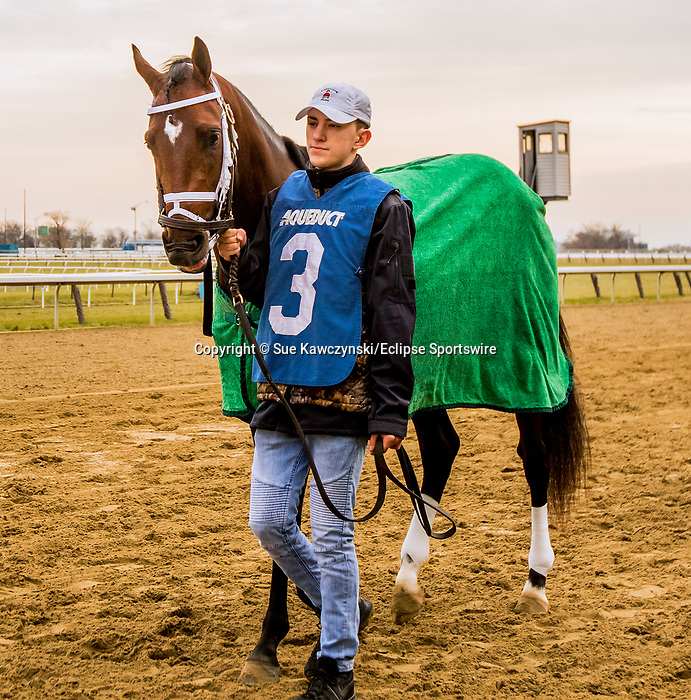 DECEMBER 01, 2018 : #3, Bourbon War in the Remsen  Stakes at Aqueduct Racetrack on December 24, 2018 in Ozone Park, NY.  Sue Kawczynski/ESW/CSM