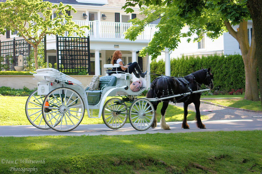 Horse & Buggy wait for a fair at Niagara on the Lake