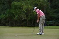 Brendon Todd (USA) watches his putt on 10 during round 4 of the 2019 Houston Open, Golf Club of Houston, Houston, Texas, USA. 10/13/2019.<br /> Picture Ken Murray / Golffile.ie<br /> <br /> All photo usage must carry mandatory copyright credit (© Golffile | Ken Murray)