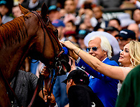 ELMONT, NY - JUNE 09: Trainer Bob Baffert and his wife Jill pet #1, Justify, winner of the Belmont Stakes and the 13th horse to win the Triple Crown during the 150th running of the Belmont Stakes at Belmont Park on June 9, 2018 in Elmont, New York. (Photo by Carson Dennis/Eclipse Sportswire/Getty Images)