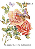 Interlitho, FLOWERS, paintings, 2 roses, butterfly(KL3239/3,#F#) stickers