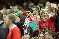 Pictured: A male Wales fan Saturday 22 November 2014<br />