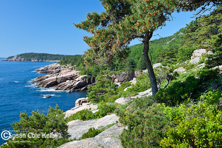A stunning view of Frenchman Bay from the Ocean Path in Acadia National Park, Downeast, ME, USA