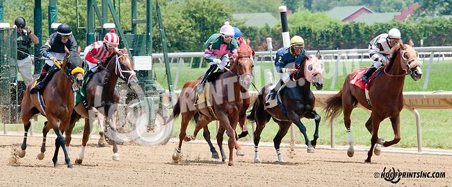Champion Sound winning at Delaware Park on 7/10/14