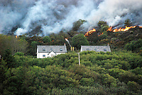 Residents flee wild fire on Colonsay