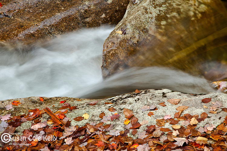 Basin Brook in Franconia Notch State Park, NH, USA