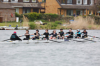Crew: 202  FAL- Moir  Falcon Rowing Club  Mx 8+<br /> <br /> Abingdon Spring Head 2019<br /> <br /> To purchase this photo, or to see pricing information for Prints and Downloads, click the blue 'Add to Cart' button at the top-right of the page.