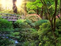 Bridge and stream. Portland Japanese Garden, Oregon