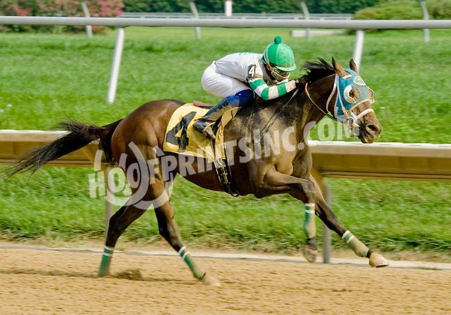 L. C. Sleepy winning at Delaware Park on 9/6/12