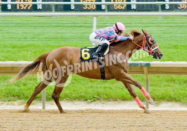 Pleasant Hymn winning at Delaware Park on 5/21/12