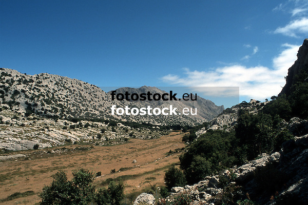 Valley in the Tramontana mountains with view to the highest mountain of Majorca, Puig Major (1.445 m)<br /> <br /> Valle en la Sierra de Tramontana (cat.: Serra de Tramuntana) con vista al monte m&aacute;s alto de Mallorca, Puig Major de Son Torrella (1145 m)<br /> <br /> Tal im Tramontana Gebirge mit Blick zum h&ouml;chsten Berg Mallorcas, Puig Major (1445 m)<br /> <br /> 3079 x 2050 px<br /> Original: 35 mm slide transparancy