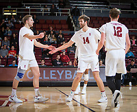 STANFORD, CA - January 17, 2019: Paul Bischoff, Kyler Presho, Jordan Ewert at Maples Pavilion. The Stanford Cardinal defeated UC Irvine 27-25, 17-25, 25-22, and 27-25.