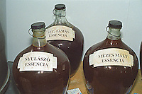 """The Royal Tokaji Wine Company: Glass demijohns with slowly fermenting Tokaj Eszencia (essencia), the extremely concentrated sweet essence of Tokaj. With vineyard denominations: Nyulaszo, Szt. Tamas (Saint Thomas) and Mezes Maly. The RTWC in was one of the first Tokaj wineries to be """"revived"""" by an injection of foreign capital. It makes wine in a traditional style. Credit Per Karlsson BKWine.com"""