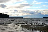 Wildlife and sky in Ephraim Harbor, Door County, Wisconsin
