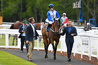 Winner of The Penang Turf Club Malaysia Handicap Chitra ridden by Richard Kingscote and trained by Daniel Kubler  is led into the Winners enclosure during Afternoon Racing at Salisbury Racecourse on 16th May 2019