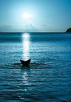 Mermaid Blue<br /> at sunset from Little Maho Bay<br /> Simonsen Sunset Stream<br /> St. Joh<br /> US Virgin Islands