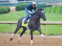 Frac Daddy, trained by Ken McPeek, works out in preparation for the Kentucky Derby at Churchill Downs on April 29, 2013.
