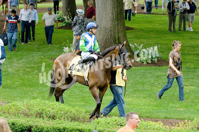 Ageless before The Go For Wand Stakes at Delaware Park on 6/11/12