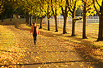 Woman enjoying a walk in the autumn leaves